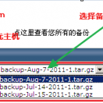 image0053 150x150 无忧主机推荐网站数据整站备份方法