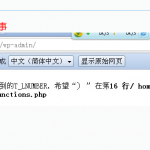 image00110 150x150 快速解决Wordpress主题导致网站崩溃的问题
