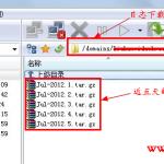 image0033 150x150 无忧主机强大的日志功能和网站日志分析统计