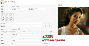 wp 5 23 1 300x157 WordPress图片加文字/图片水印插件:DX Watermark